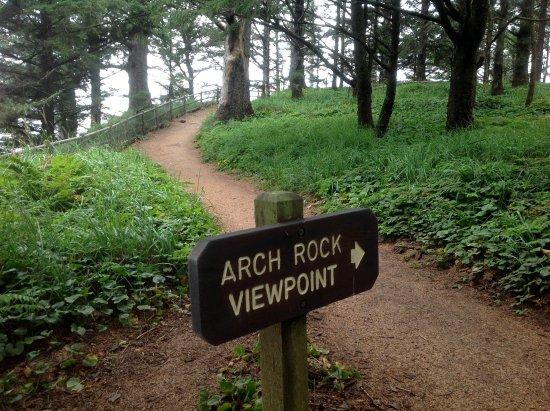 Harris Beach State Park: Viewpoint trail