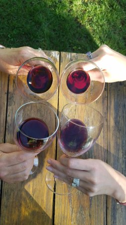 Wine Tour New York (Greenport) - UPDATED 2019 - All You Need