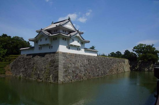 Shizuoka castle