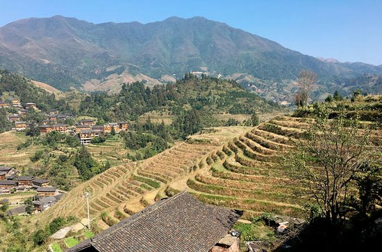 Longsheng Rice Terraces 2-Day Tour from Guilin