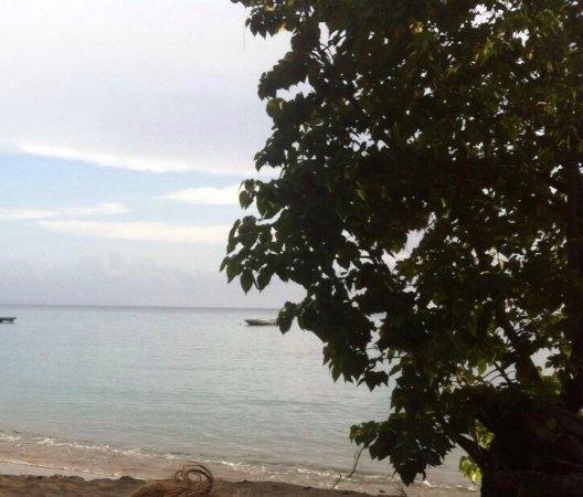 Les Anses d'Arlet, Martinica: photo0.jpg