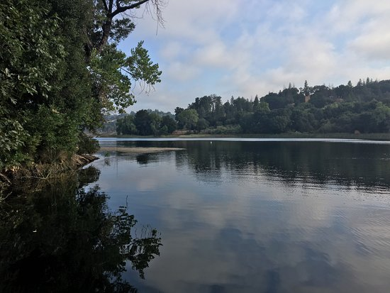 Lafayette Reservoir : photo0.jpg