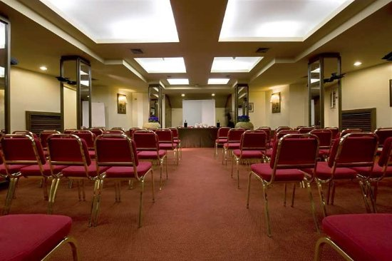 Polo Hotel: Meeting Room