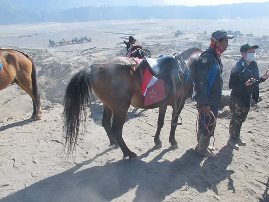 Mount Bromo: The horsemen service at the foothill
