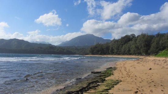 Hale Ho'o Maha Bed & Breakfast: Nearby beach