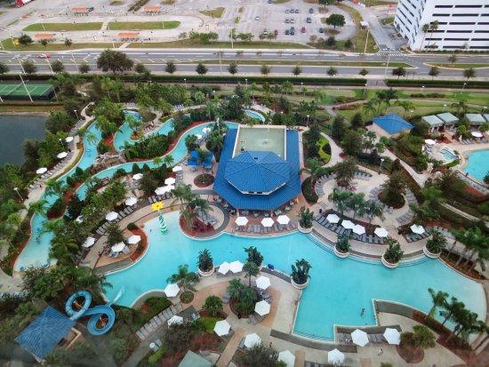 Hilton Orlando : Amazing view!