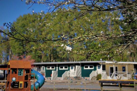 Rotorua Hideaway Lodge Photo