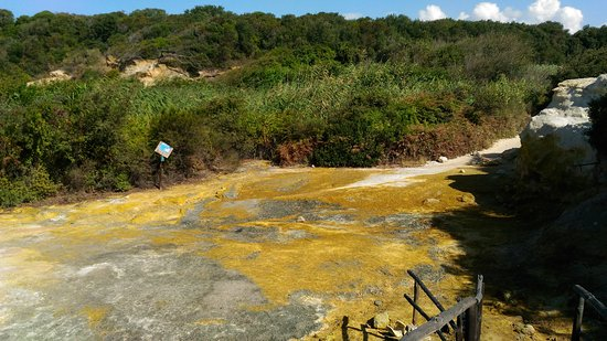 Riserva Naturale di Tor Caldara Foto