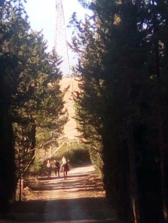 Civitella Marittima, Italy: i cavalli di Pietra Serena