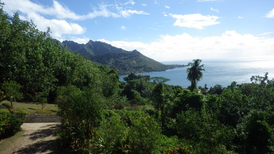 موريا, بولينيزيا الفرنسية: vue sur la baie de cook's