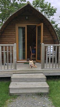 Rexie guarding the Wigwam