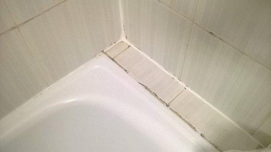 Hotel roc boccaccio majorca spain reviews photos price comparison tripadvisor - Muffa nella doccia ...