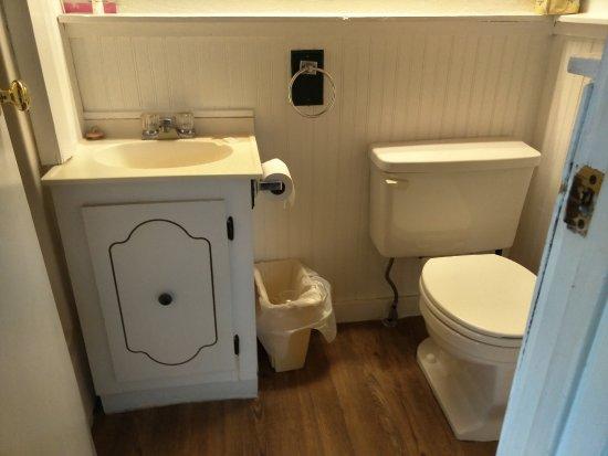 Blue Mountain Lodge: Micro bathroom