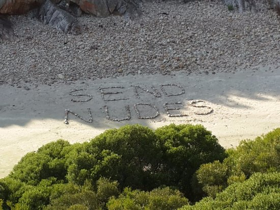 Gordon's Bay, Südafrika: this was not done by my group; was funny though