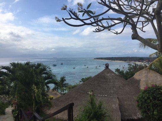 Coconuts Beach Resort : photo0.jpg