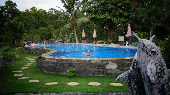 Two Fish Divers Bunaken: Magnifique piscine en plateaux
