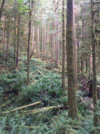 Egmont, Canada: photo1.jpg