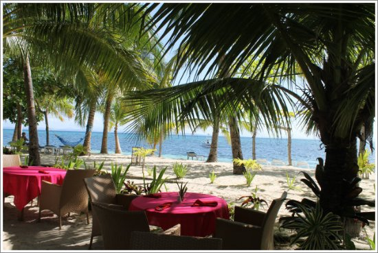 Malapascua Exotic Bar & Restaurant: we chose one of these tables