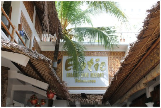 Malapascua Exotic Bar & Restaurant: the resort accommodation