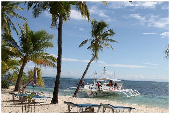 Malapascua Exotic Bar & Restaurant: beach view