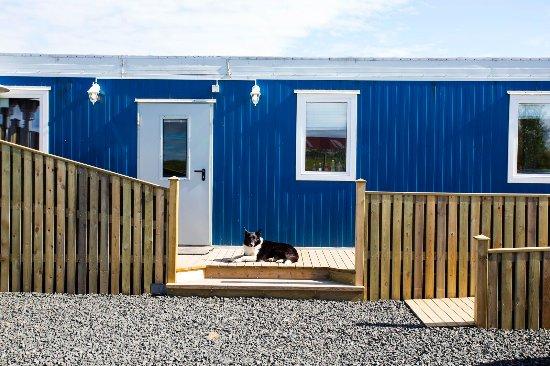 Borgarnes, Islandia: Hestaland