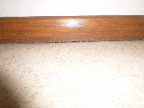 Ancaster, UK: mould appearing under the wood skirting board