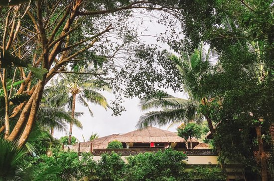 Shangri-La's Boracay Resort & Spa: 밖에서 본 빌라모습