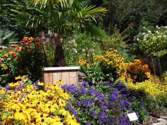 Glorious Display Bild Von Botanischer Garten Göttingen Tripadvisor