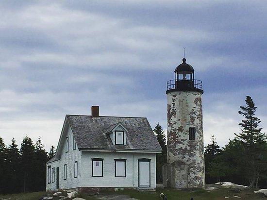 Baker Island Acadia National Park Tour - Bar Harbor Whale Watch Company