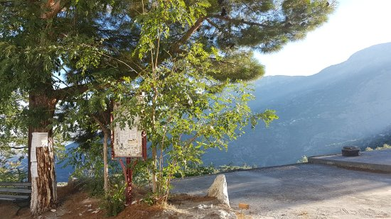 Males, Greece: Trees