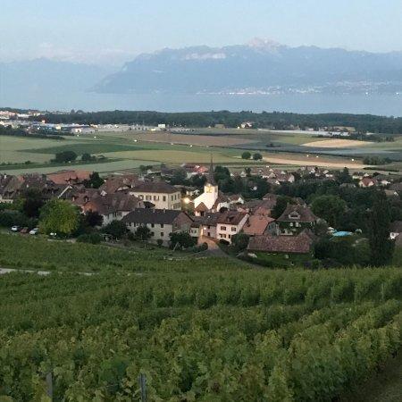 Fechy, Suisse : Une vue de notre village depuis le haut! Incroyable, non?