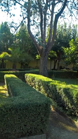 Casa Santo Nome di Gesu: Закрытый сад отеля