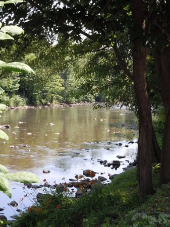 Friendsville, MD: Relax on the banks of the Yough River