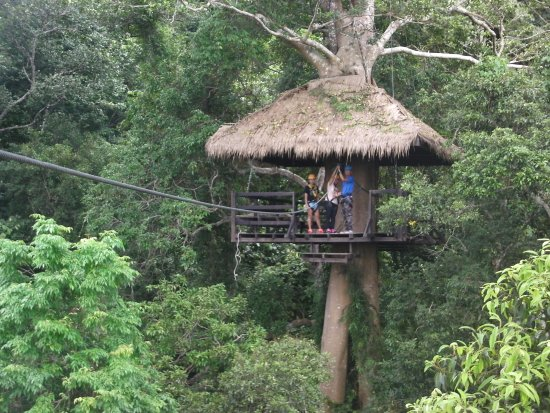 Flight of the Gibbon : just about to take a another zipline