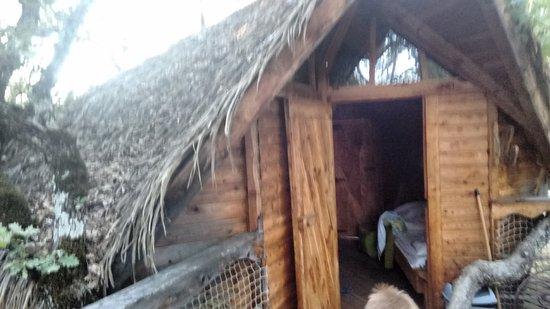 les maisons de chante oiseau sigonce frankrijk foto 39 s reviews en prijsvergelijking. Black Bedroom Furniture Sets. Home Design Ideas