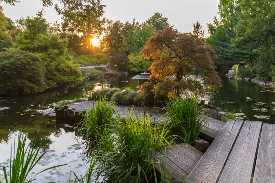 The Asian Valley At Sunset During Extended Summer Hours At Flowers After 5 Image By Tom Henness