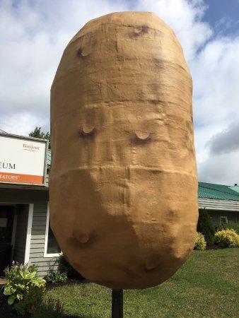 O'Leary, Canadá: 巨大なジャガイモの模型(看板?)です