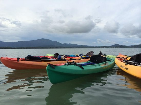 ‪Barefoot Travelers Kayak Tour to Monkey Island‬