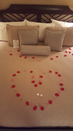 Ethan Allen Hotel: Silk rose petals on the bed, arranged in a heart for our wedding night.