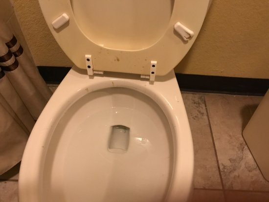 Amerik Suites Laredo Behind Mall Del Norte: You can see the feces on the seat and rim