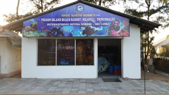 International Diving School : getlstd_property_photo