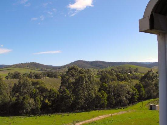 Dixons Creek Estate - View from Cellar Door Deck