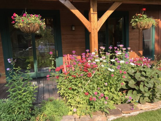The Alpine House Lodge & Cottages: Beautiful garden