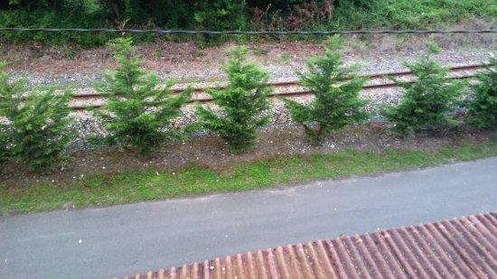 Riego, Espanha: Vistas desde la habitación: las vías del tren se encuentran a escasos metros del hotel.
