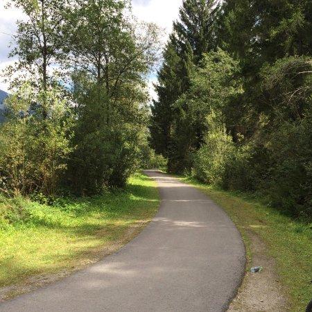 Province of South Tyrol, Italy: Inoltro nel bosco