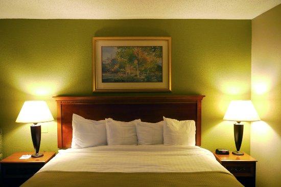 Best Western Plus Cary Inn - NC State: Décoration plutôt cossue de style Américain classique, lit merveilleusement vaste et confortable