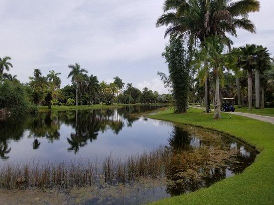 Fairchild Tropical Botanic Garden: Grounds at the gardens