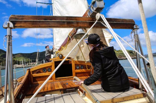 Sausalito, Californië: Peregrine Under Sail