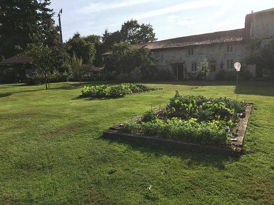 Royeres, Prancis: le jardin bio