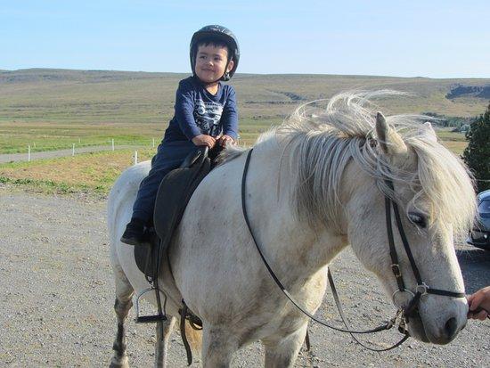 Sturlureykir Horses/Visiting HorseFarm: My 2 year old son, Jakob, going for a horseback ride in Sturlureykir.